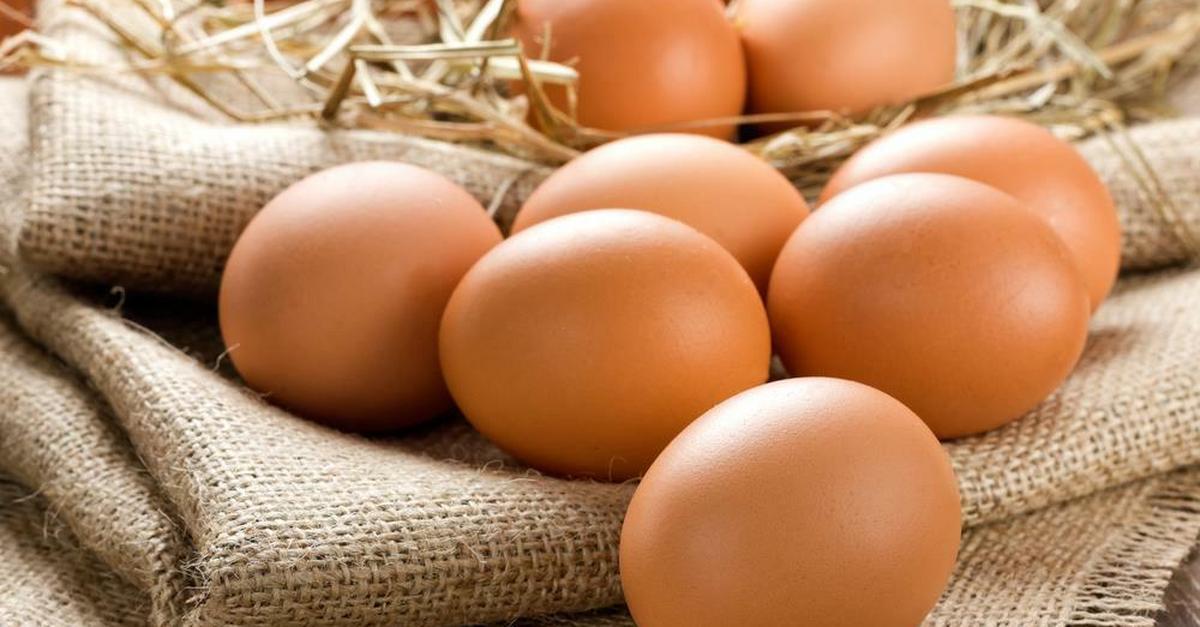 jajko z erekcją