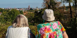 Gdańsk dla Macieja Kosycarza. Oto panorama miasta z punktu widokowego jego imienia