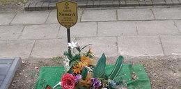 Legendarny polski trener zmarł 9 miesięcy temu. Tak wygląda jego grób