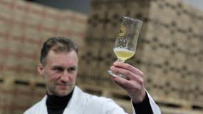 Olsztyn - urodzinowe piwo dla Kopernika