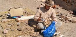 Polscy naukowcy odkopali starożytny grobowiec