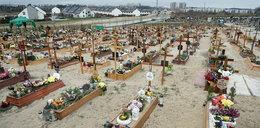 Pandemia zbiera przygnębiające żniwo. Zdjęcia z gdańskiego cmentarza pokazują jej skalę!