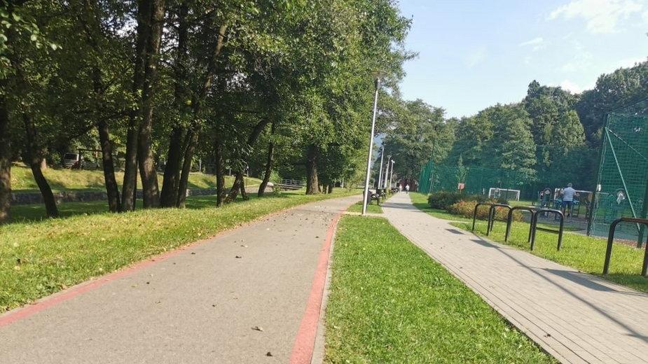 Bielsko-Biała. Piesi wchodzą na ścieżkę rowerową. Skończyło się źle