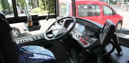 Gdynia pęka z dumy! Ma nowe autobusy!