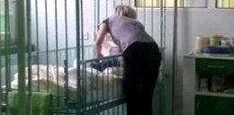 Skandal w Łukowie. Niemowlę w szpitalu leżało w odchodach