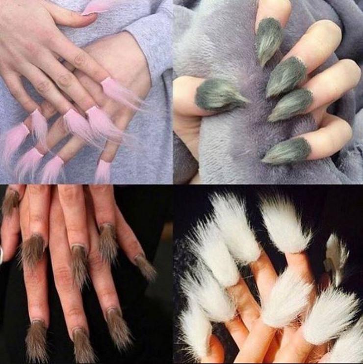 nokti kao krzno