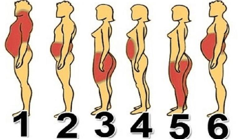 fogyás elhízás