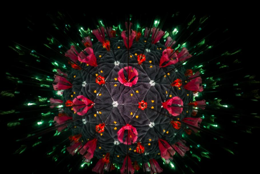 Model of Human Coronavirus particle created with kaleidoscope