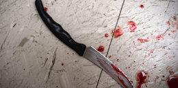 Polak dźgnięty nożem, bo znalazł pająka w pizzy