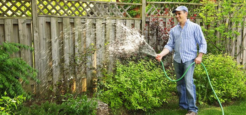Dzień Ojca 2021 - pomysł na prezent dla taty ogrodnika!