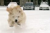 hrvatska sneg