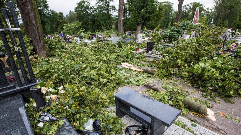 Zniszczenia na cmentarzu w Gnieźnie