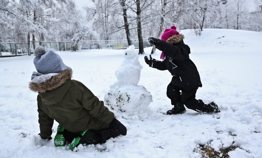 Atak zimy na Polskę