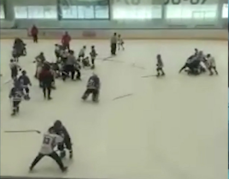 Detalj sa hokejaške utakmice
