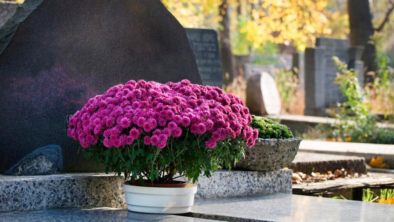 Wiazanki I Stroiki Na Swieto Zmarlych Jakie Kwiaty Na Cmentarz Dom