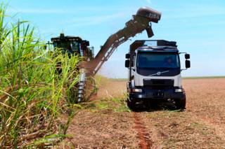 Automatycznie kierowana ciężarówka Volvo zwiększy zbiory trzciny cukrowej w Brazylii