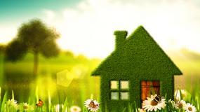 Wiosenne inspiracje dla domu i ogrodu