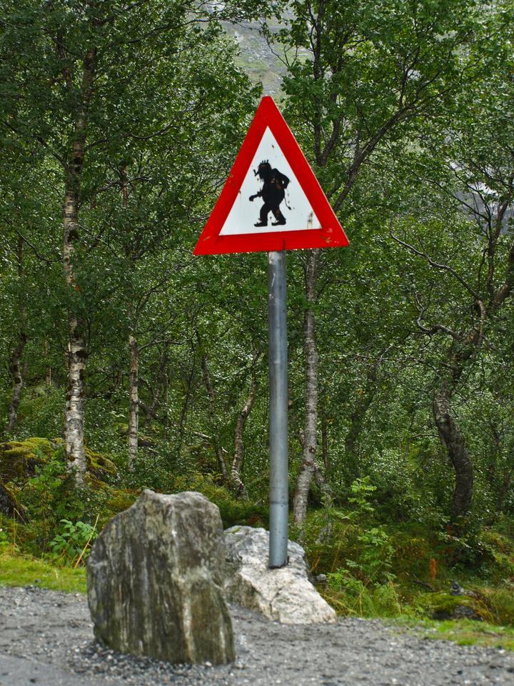 Norwegia pokazuje potęgę natury. Niezwykły kraj fiordów otoczonych wysokimi górami i lodowcami