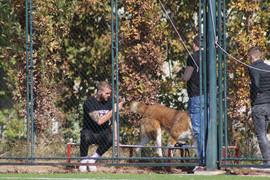 PAPARACO Veljko Ražnatović rano ujutru izašao da prošeta psa i evo šta je u jednom trenutku uradio