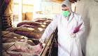 Dimljeno meso i kobasice nose rizik od smrtonosne larve koja, ako vas ne ubije, ostaje u organizmu 30 GODINA