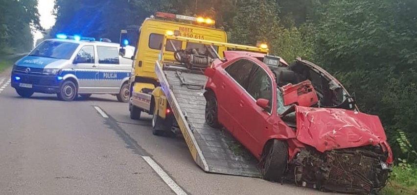 Dramatyczny wypadek pod Ciechanowem. 18-latek zginął w zderzeniu z łosiem