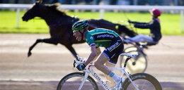 Znany kolarz przegrał z... koniem. WIDEO