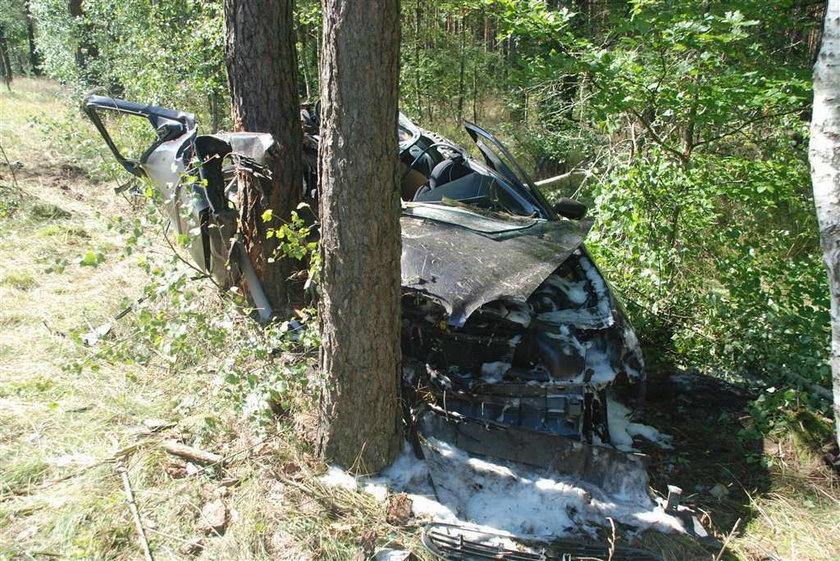 Drzewo przebiło forda! 2 osoby nie żyją, reszta walczy o życie