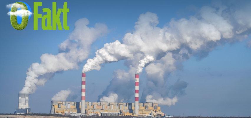 Ślad węglowy - co to jest i jak to można policzyć?