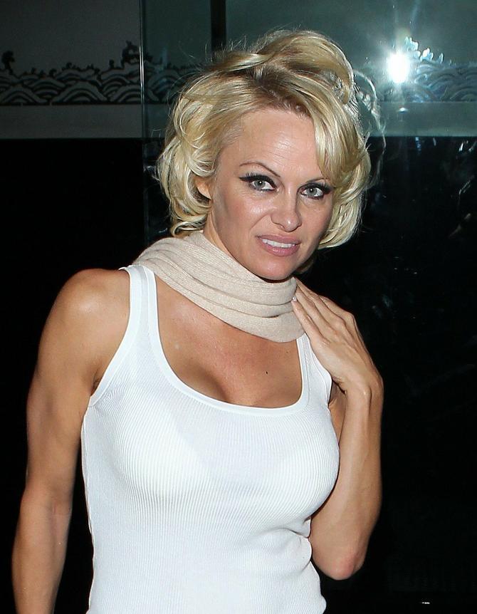 Pamela 2015. godine