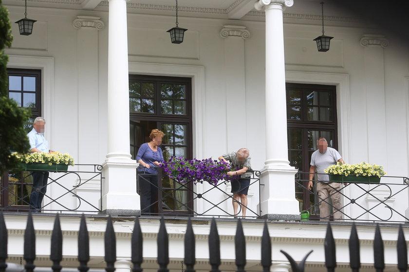 Akcja kwiaty
