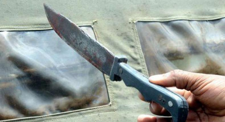 File Image of a knife used in a murder