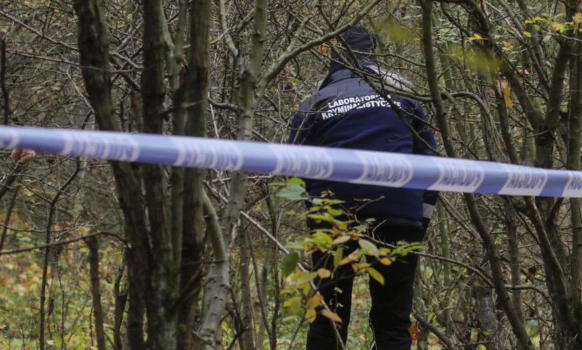 72-latka zaginęła na grzybobraniu