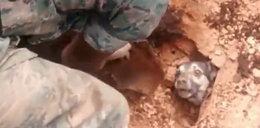 Uratowali psa przysypanego ziemią