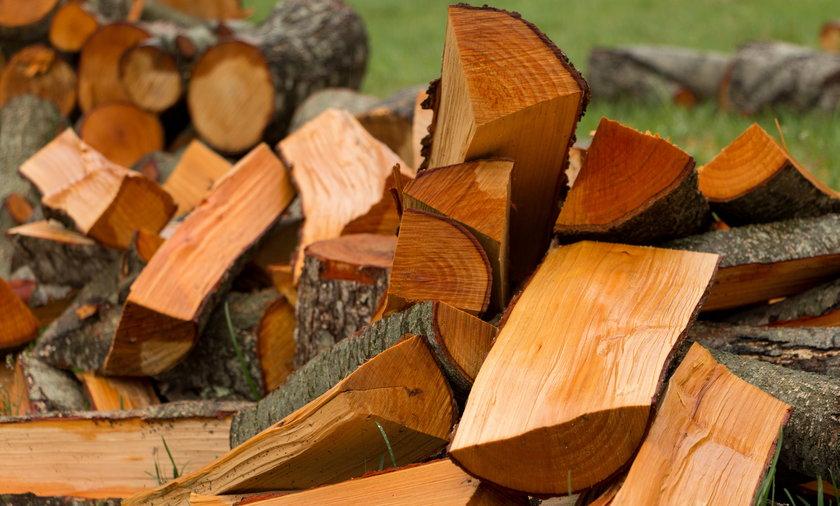 Wzrost cen drewna w Polsce i na świecie