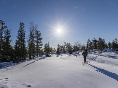 Doskonałym kierunkiem podróży dla samotników jest biały, cichy i przepiękny krajobraz Laponii