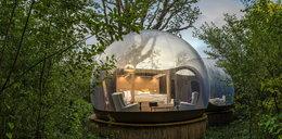 Niezwykły domek w lesie. Zobacz jak wygląda