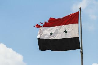 W Syrii umilkły strzały, wątpliwości wciąż pozostały