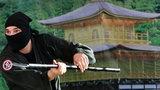 W Japonii brakuje wojowników ninja. Nie pomagają wysokie zarobki