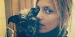 Polscy celebryci kochają zwierzęta?