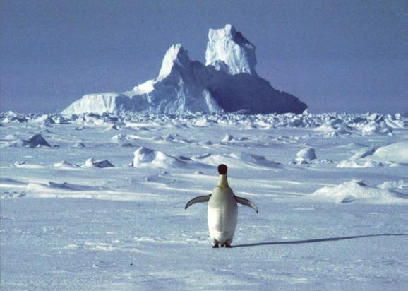 Antarctica 1 Tanjug AP