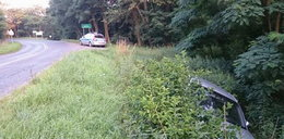 Naćpany dopalaczami kierowca audi wypadł z drogi!