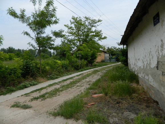 Ulica u kojoj je Miroslav V. pokušao da pregazi bivšu suprogu