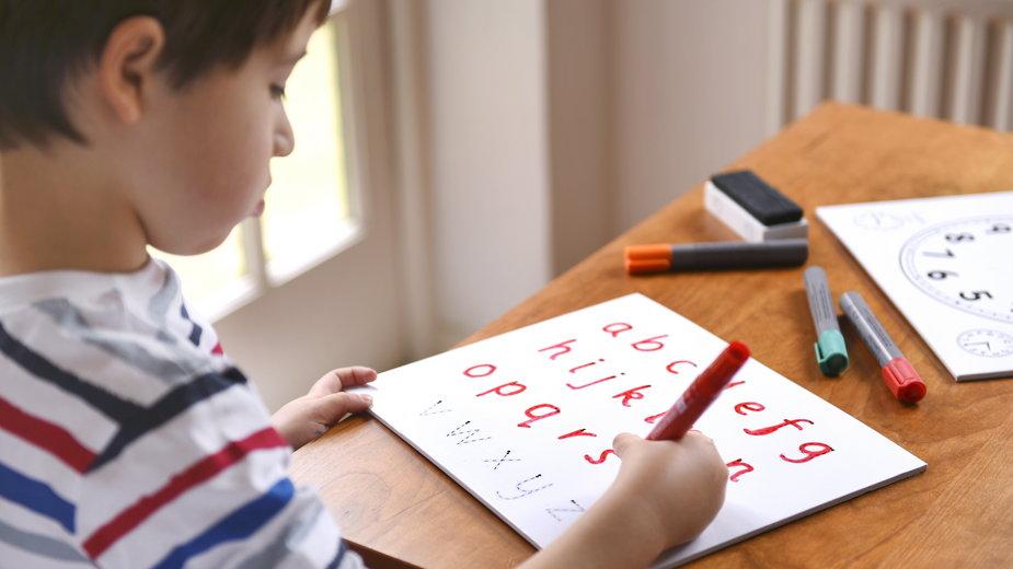 Nauczanie domowe – kto może przystąpić do edukacji domowej i w jaki sposób ona przebiega?