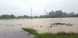 IMGW wydało ostrzeżenie meteorologiczne. Groźna sytuacja w Krakowie