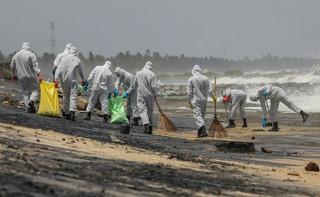 Sri Lance zagraża katastrofa ekologiczna. Martwe zwierzęta wyrzucane na brzeg