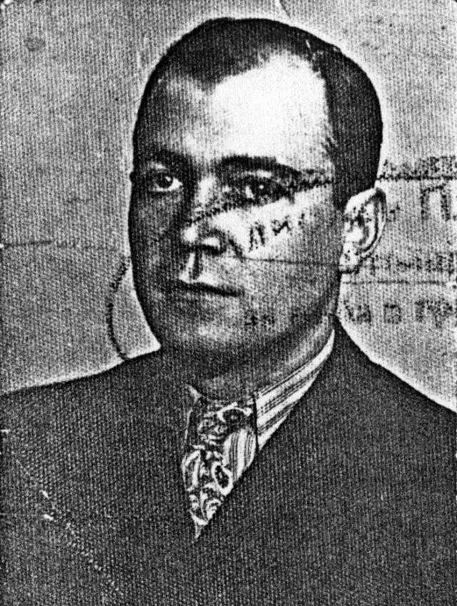 Aleksandar Mihajlović Vili