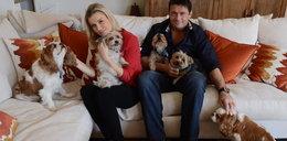 Joanna Krupa będzie sądzić się o psy?