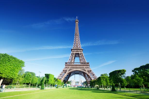 Francuski obywatel zgłosił do rejestracji znak graficzny zawierający nazwę domeny i wieżę Eiffla