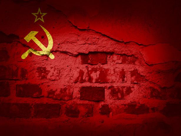 W grudniu 1990 r., na rok przed formalnym upadkiem imperium, pojawiła się koncepcja reorganizacji kraju.
