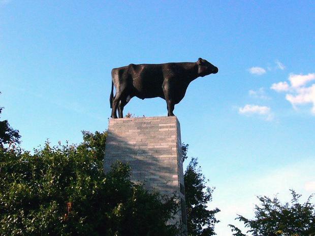 Wschowa, pomnik byka Ilona